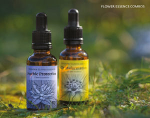 elixirs de fleurs de Findhorn