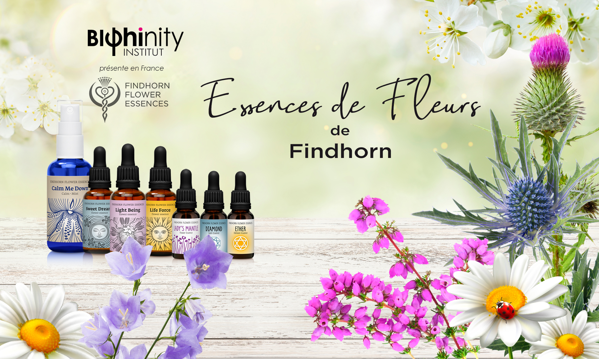 Essences de Fleurs de Findhorn